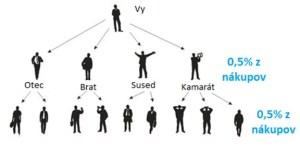 lyoness hierarchia