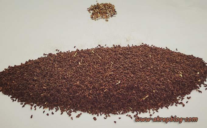 üzerlik tohumu yağı nasıl yapılır