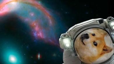 "Photo of تطبيق "" ناسا "" ينقلك خارج العالم لالتقاط "" سلفي فضائي "" !"