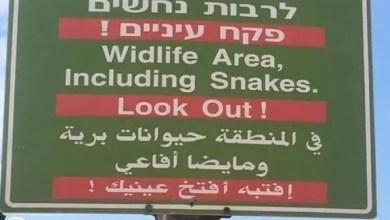 """Photo of بلدية """" إسرائيلية """" تقع بخطأ لغوي يثير سخرية العرب"""