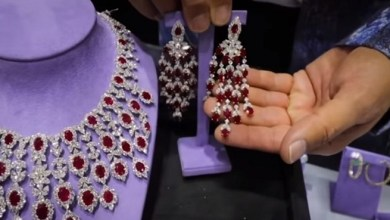 Photo of أميرة سعودية تقتني مجوهرات بمبلغ خيالي ( فيديو )