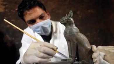 Photo of قطط محنطة و مقابر و تماثيل .. الإعلان عن كشف أثري جديد في مصر ( صور )