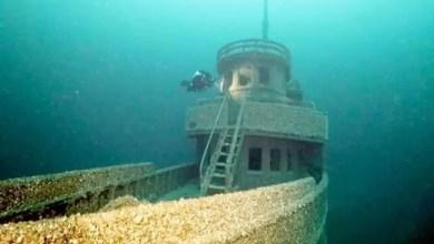 """صورة كندا : العثور على السفينة """" الملعونة """" بحمولة ثمينة"""