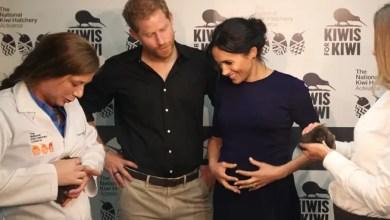 Photo of لماذا ترفض ميغان ماركل إشراف الفريق الطبي الملكي على ولادة طفلها ؟