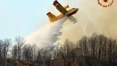 Photo of إيطاليا : شابان يتسببان بحريق بسبب الشواء .. و الغرامة 27 مليون يورو