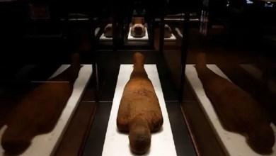 Photo of اكتشاف سر مثير لشعرات مومياوات مصر المحفوظة منذ 30 قرناً