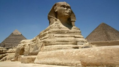 """Photo of وزير الآثار المصري : اكتشاف """" حيوان غريب """" قد يحل لغز أبو الهول"""
