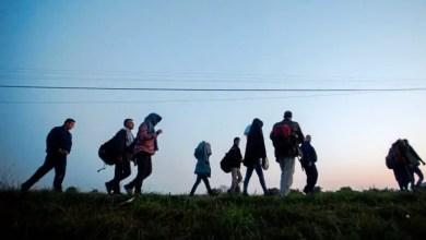"Photo of ألمانيا تعلن فتح أبوابها لـ "" المهاجرين المهرة "" في الأعوام المقبلة"