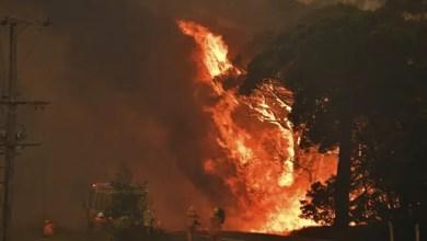 Photo of أستراليا : إعصار ناري يرفع شاحنة في الهواء و يقتل رجل إطفاء