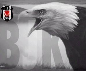 Beşiktaş Ankaragücü Maçının Golleri izle