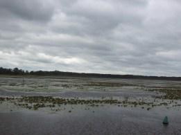 Jezioro Dróżno