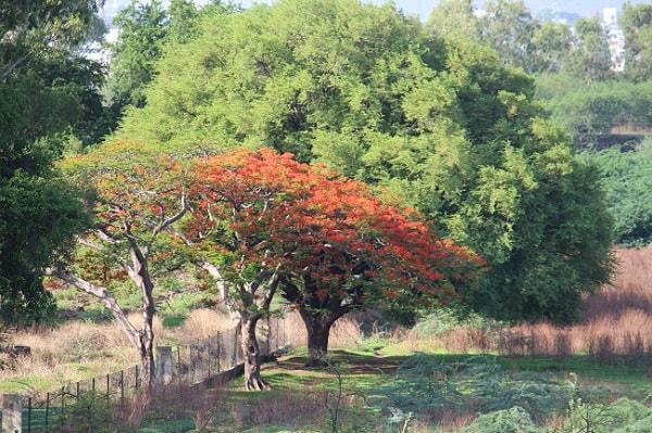 le jardin impérial d'Aurangabad