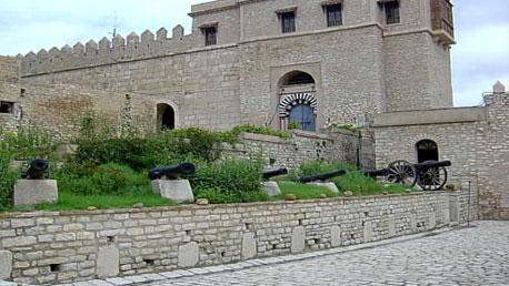 قرية الانصاريين بتونس