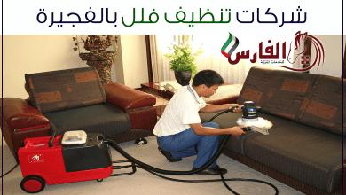 Photo of شركة تنظيف فلل الحلاة بالفجيرة