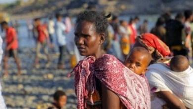 لاجئون إثيوبيون يفرون من الاشتباكات في منطقة تيغراي يعبرون الحدود إلى السودان. - من باب المجاملة مفوضية الأمم المتحدة لشؤون اللاجئين