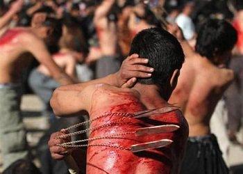 ضرب الظهور بالحديد عند الشيعة achoura chiaa