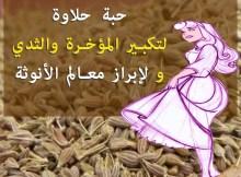وصفة حبة حلاوة لتكبير المؤخرة والثدي