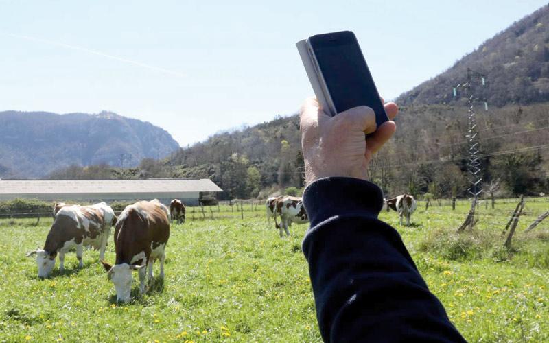 تقرير: 90.7 في المائة من سكان البوادي يتوفرون على هاتف محمول
