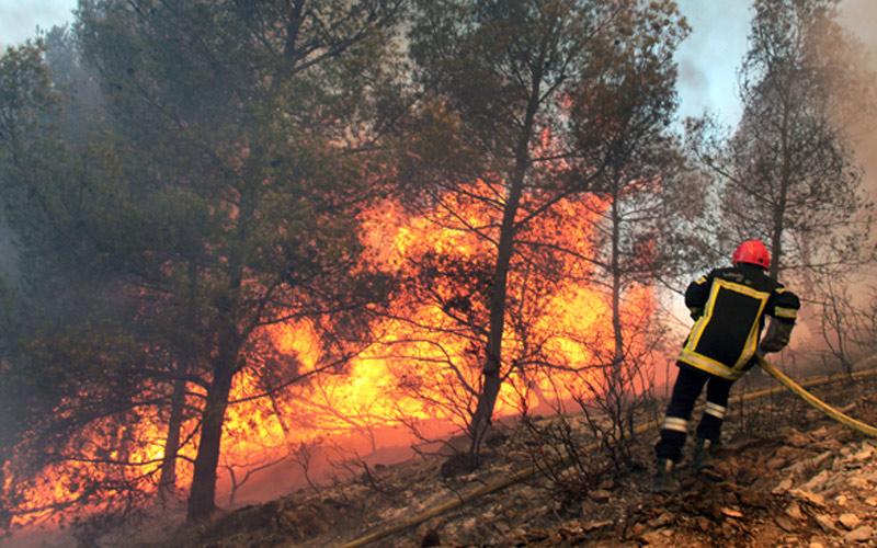 النيران تأتي على 2585 هكتار من الغابات السنة الماضية وانخفاض المساحة الغابوية المحترقة ب 51 في المائة بين سنتي 2013 و 2016