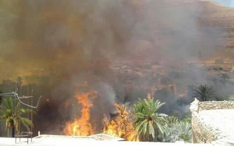 حرائق مهولة تأتي على واحة طاطا والساكنة تطالب بتدخل المروحيات