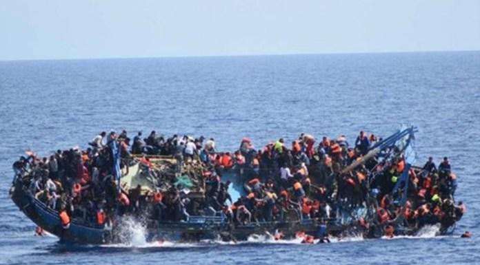 مهاجرا