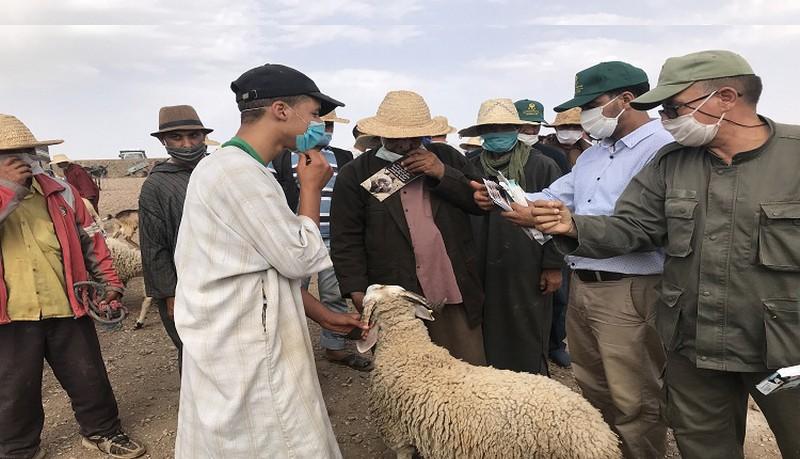 'الصحة العالمية' تحذر المغرب من انتكاسة وبائية كارثية بالتزامن مع عيد الأضحى
