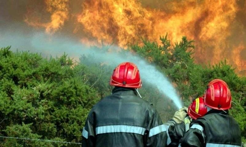 المغرب يسجل 285 حريقاًفي 9 أشهر ومنطقة الريف الأكثر تضرراً