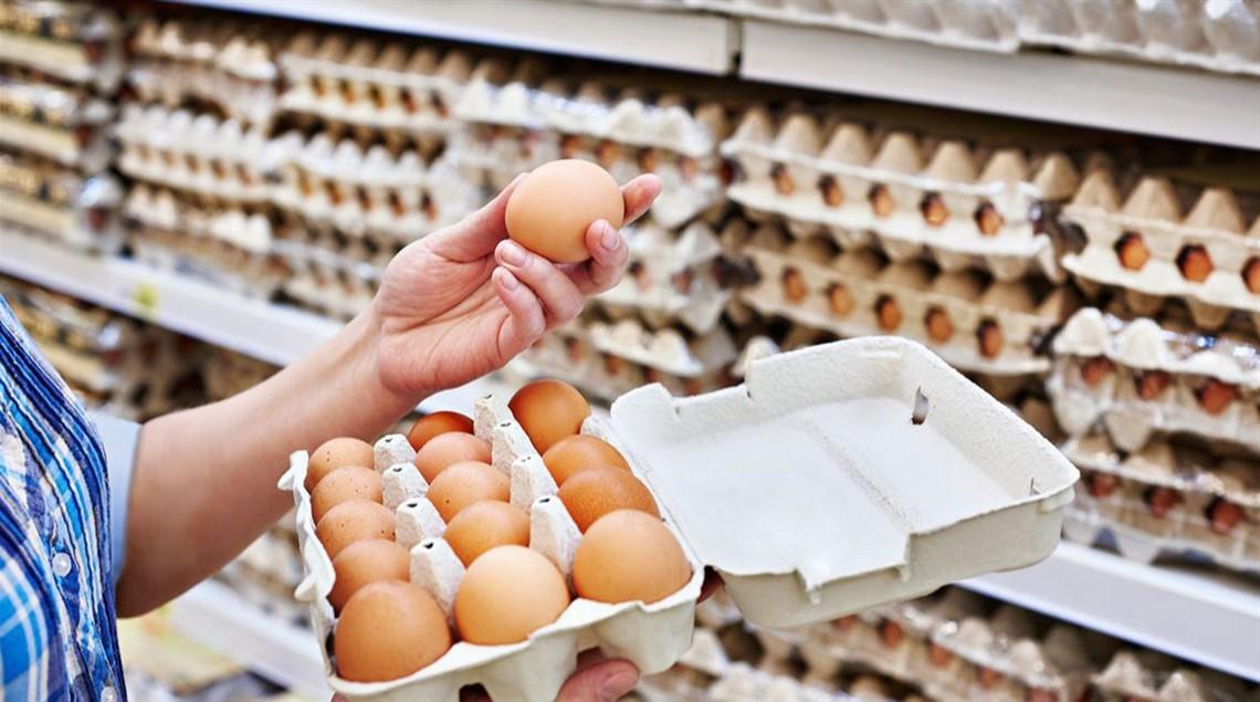 """مثير. اعتقال عاملة بتهمة سرقة 16 بيضة من شركة برلماني عن """"البام"""" بالرحامنة"""