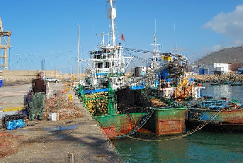 أزيد من 693 مليون درهم قيمة مفرغات الأسماك بميناء سيدي إفني ما بين 2016 و2020