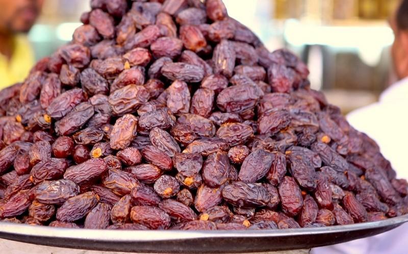 هكذا أرسل ملك المغرب 11 شجرة نخيل لكاليفورنيا تحولت إلى مزارع كبيرة في أمريكا