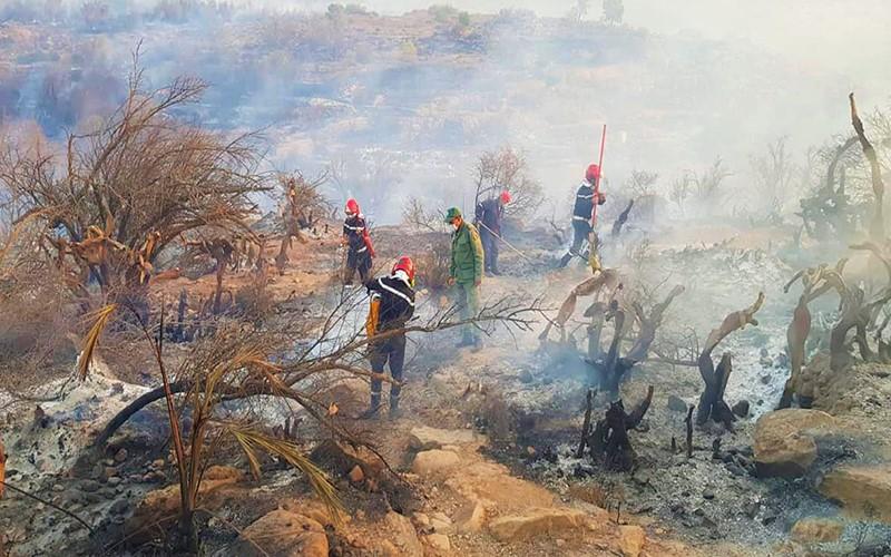 فرق الإطفاء تسيطر بشكل نهائي على حريق 'واحة تاركا' باشتوكة أيت باها