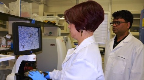 Southern Research workers search for a new influenza drug. The groundbreaking research done in Birmingham is one of its prime assets, the BBA's Brian Hilson says. (Southern Research)