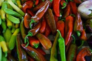 Belle Meadow's organically grown produce has developed quite a following, including superstar Birmingham restaurateur Frank Stitt. (Mark Sandlin/Alabama NewsCenter)