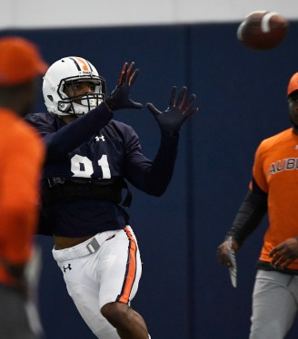 Auburn wide receiver Darius Slayton (81) makes a catch during practice in Auburn last week. (Todd Van Emst/AU Athletics)