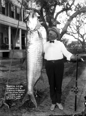 A 215-pound tarpon caught in the Gulf of Mexico off Coden, Alabama, in 1910. (From Encyclopedia of Alabama, courtesy of Erik Overbey Collection, The Doy Leale McCall Rare Book and Manuscript Library)