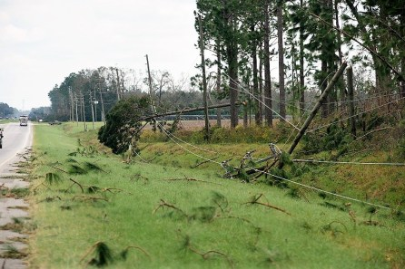 Residents were cautioned to watch for downed lines. (Wynter Byrd/Alabama NewsCenter)