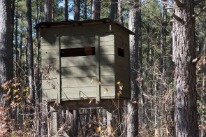 A hunting stand on the Master Rack Lodge property. (Brittany Faush/Alabama NewsCenter)