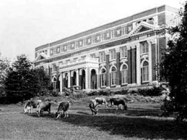 Jersey dairy cows grazing near Comer Hall at Auburn University, c. 1924. Comer Hall houses the administrative offices of the university's College of Agriculture. (From Encyclopedia of Alabama, courtesy of the Auburn University Libraries)