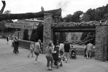 Akron Zoo is one of the places that has worked with KultureCity to address those with sensory needs. (KultureCity)