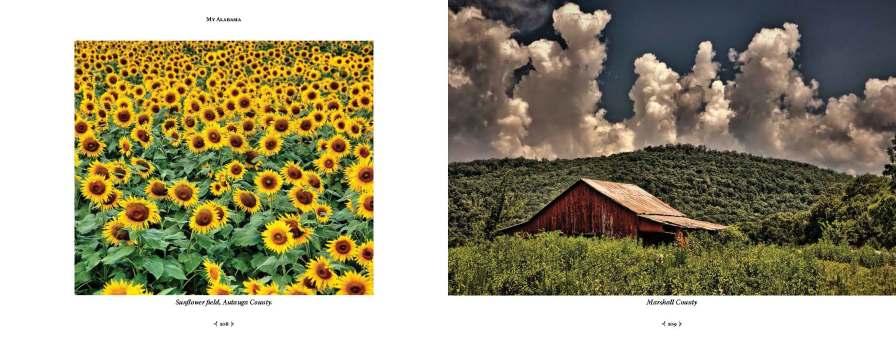 """My Alabama - John Dersham Photographs a State."" (NewSouth Books)"