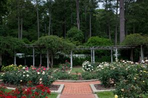 Birmingham Botanical Gardens, 2010. (The George F. Landegger Collection of Alabama Photographs in Carol M. Highsmith's America, Library of Congress, Prints and Photographs Division)