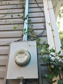 Vegetation should be kept clear of electric meters. (contributed)