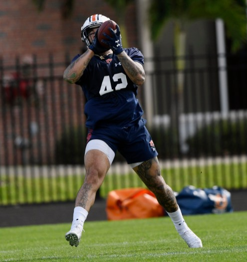 Jay Jay Wilson (42) catches the ball during an Auburn football Outback Bowl week practice in Tampa. (Todd Van Emst/AU Athletics)