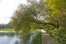 Bellingrath Gardens is open daily from 8 a.m. to 5 p.m. including Memorial Day. (Getty Images)