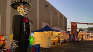 Birmingham's Day of the Dead finds new life during pandemic