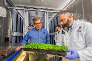 Desmond Layne, front left, head of Auburn's Department of Horticulture, and Daniel Wells, associate professor, prepare to transplant lettuce plants to the vertical rows in a converted, high-tech shipping container. In the background are students Kyle Hensarling and Adam Lenhard. (Auburn University)