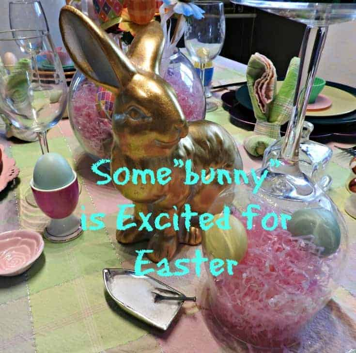 some bunny is excited table setting