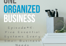 One Organized Business Podcast - 5 Essential Systems Every Small Business Needs