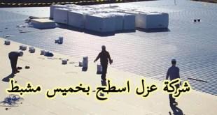 شركة عزل اسطح بخميس مشيط