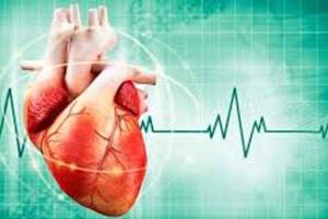 أسباب عدم إنتظام ضربات القلب
